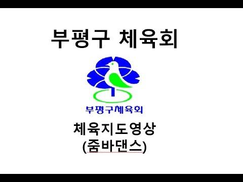 부평구체육회 체육지도영상 줌바영상 9강