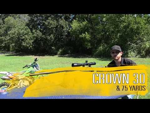 FX Crown  25 cal Plinking At 207 yards - игровое видео