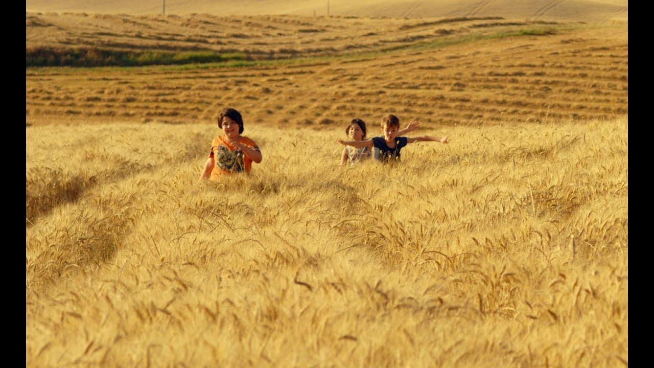 Пшеничное море (N.I.C.E.)