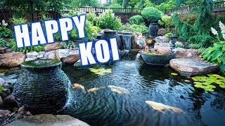 GARDEN Pond With Happy Koi