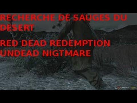 RED DEAD REDEMTION A la recherche de sauge du desert