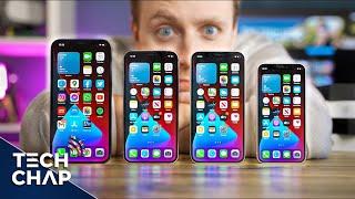 Which iPhone Should You Buy? 12 Mini vs 12 vs Pro vs Pro Max