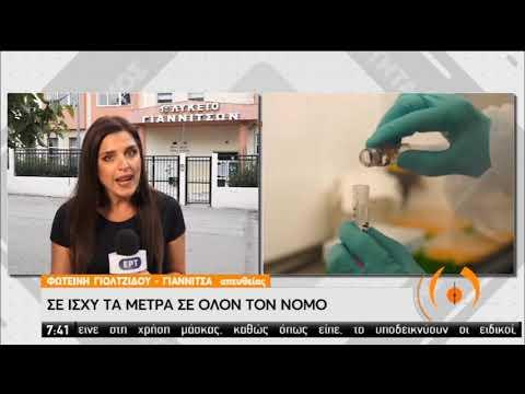 Γιαννιτσά | Προσωρινή αναστολή λειτουργίας των σχολείων | 14/09/2020 | ΕΡΤ