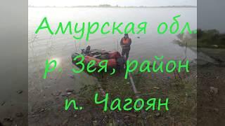 Чем ловить на реке амурской области
