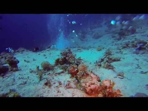 UW-Video Dahab (verschiedene Tauchplätze)
