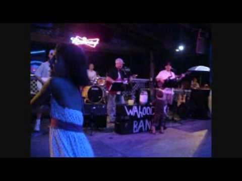 The Wahoo Creek band Garden City 6-24-2010.wmv