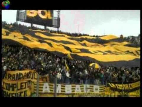 """Barra Amsterdam - Peñarol - Uruguay"" Barra: Barra Amsterdam • Club: Peñarol"