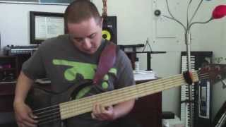 La Bella White Nylon Bass Strings Demo