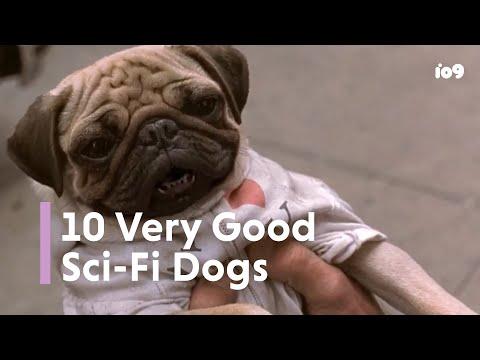 10 Very Good Sci-Fi Dogs