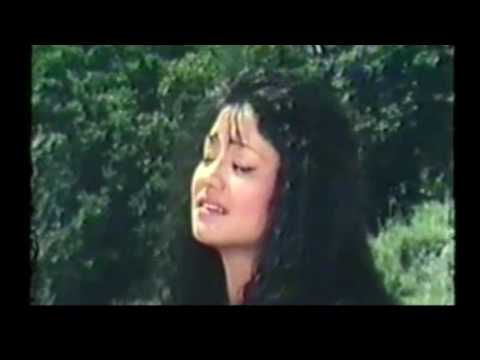 Phool Bhaya Jindagi | Nepali Movie Arpan Song