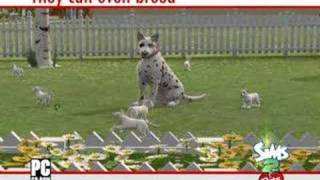 The Sims 2: Pets video