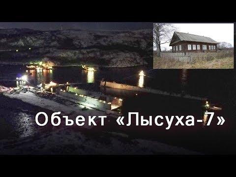 Срочное совещание в тайном бункере Путина. Объект Лысуха -7