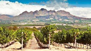 Cape To Grape Wine Tours, Cape Town