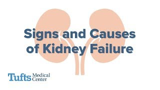 Signs and Causes of Kidney Failure