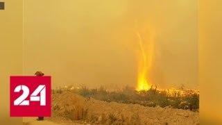 """""""Погода 24"""": пожарным из Канады пришлось сразиться с """"чудовищем"""" - Россия 24"""