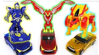 Turning Mecard W Wing Leo, Wing Knight, Wing Phoenix appeared with EvanKing, Wing Lion - DuDuPopTOY