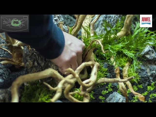 Juwel Aquarium Vision 180 Aquascaping Tutorial
