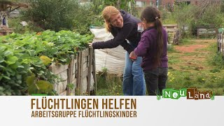 Illustration zu Filmreihe für Kölner Neuland