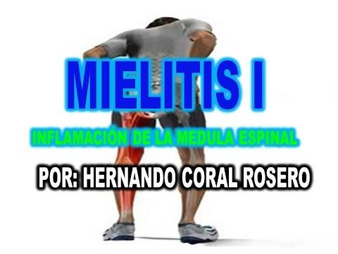 Mejores estaciones para el tratamiento de la columna vertebral