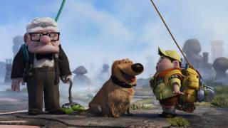 Up (2009) Video