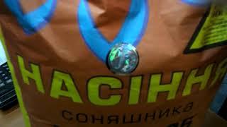 Купить подсолнечник под Гранстар НСХ 498, Цена на семена подсолнечника НСХ 498 Сумо, Гибрид для засушливых зон Украины. от компании ТД «АВС СТАНДАРТ УКРАЇНА» - видео 1