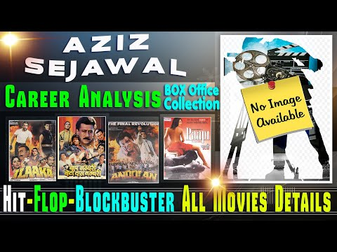 Director Aziz Sejawal Box Office Collection Analysis Hit and Flop Blockbuster All Movies List.