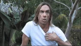 Iggy Pop about american music