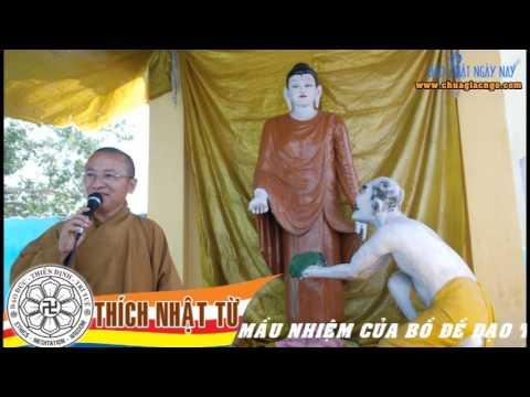 Hành Hương Phật Tích (2010) - Phần 5: Sự mầu nhiệm của Bồ-đề Đạo Tràng