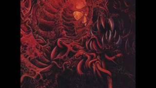 Carnage- Torn Apart