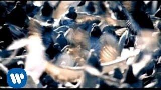 Goo Goo Dolls - Dizzy [Official Music Video]