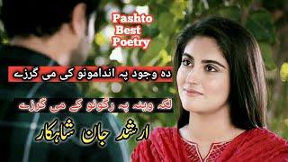 Pashto Poetry Love | Pashto Shayari |Pashto Sherona|Pashto Rahman baba Shayari |Pashto Sherona |