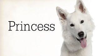 """Princess"" Creepypasta"
