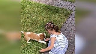 Бородина купила очень милого щенка для Теи