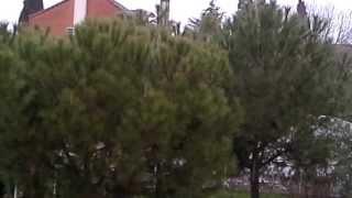 preview picture of video 'Nieve en Rivas Vaciamadrid'