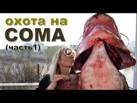 Il russo che pesca 3 come prendere Rotan