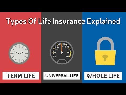 mp4 Insurance Types, download Insurance Types video klip Insurance Types