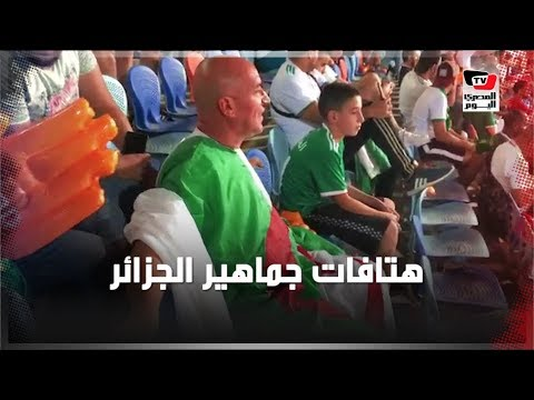 هتافات جماهير الجزائر أمام نيجيريا بـ«ستاد القاهرة»