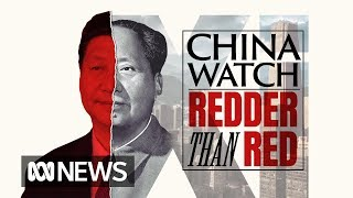 The rise of Xi Jinping: From life in exile to post-modern chairman | China Watch pt II