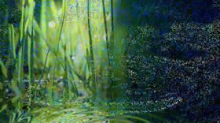 Marillion - Memory Of Water.wmv