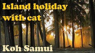 Island Holiday With Cat, Ep. 2: Koh Samui (Thailand) เกาะสมุย, สุราษฎร์ธานี