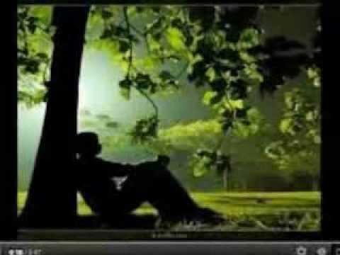 Amiga Por Favor - Pedro Fernandez (Video)