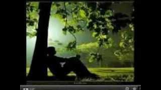 Video Amiga Por Favor de Pedro Fernandez
