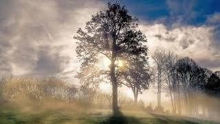 Patros15 - Before Dawn