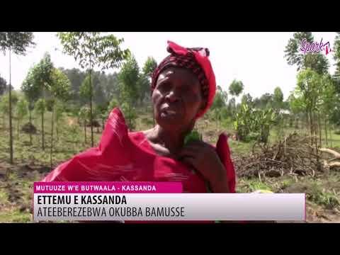 Abatuuze e Kassanda basse ateberezebwa okuba omubbi