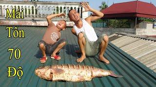 Cá Trắm 1 Nắng - Không Thể Tin Với Nhiệt Độ Trên Mái Tôn Những Ngày Nắng Nóng