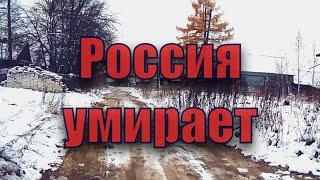 деревня в путинской россии ч.1