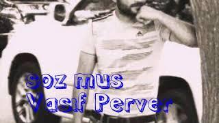 Vasif Perver & Neden Qorxmaliyam karaoke