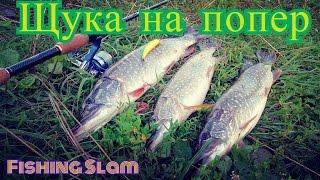 Рыбалка в селе кокши алтайский край