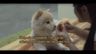 ทาสเมีย!! หมากินแซลมอน ส่วนกูกินของเหลือเมื่อวาน