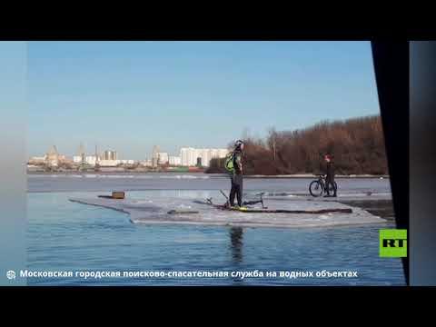 العرب اليوم - شاهد: رفع درّاجين عن قطعة جليد تحركت بهما في نهر موسكو